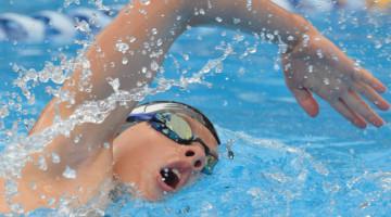 z_p20-swimming