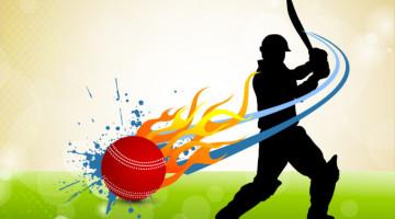 cricket_1100012753-012914-int