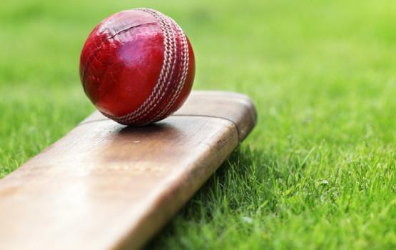 cricket-01